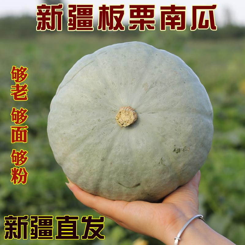 新疆板栗南瓜大贝贝老窝窝新鲜蔬菜超粉面甜宝宝辅食银栗子味丑瓜