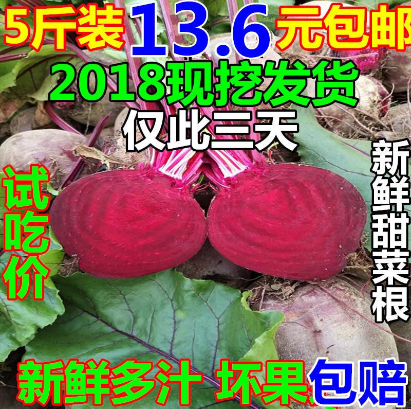 2018年新鲜农家自种甜菜根甜菜头甜徐州发货新鲜蔬菜1份5斤