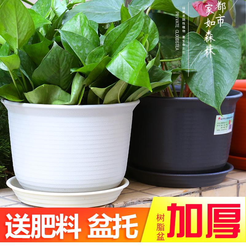 绿萝盆栽加厚圆形仿陶瓷带塑料花盆