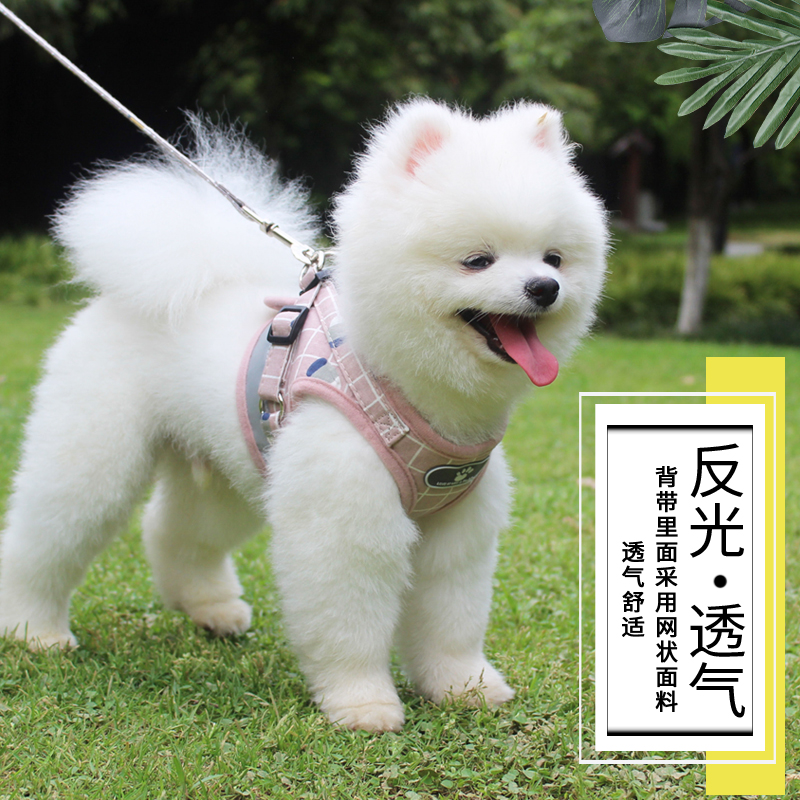 Dog traction rope vest type PET strap teddy bear dog rope proof pet supplies small dog chain