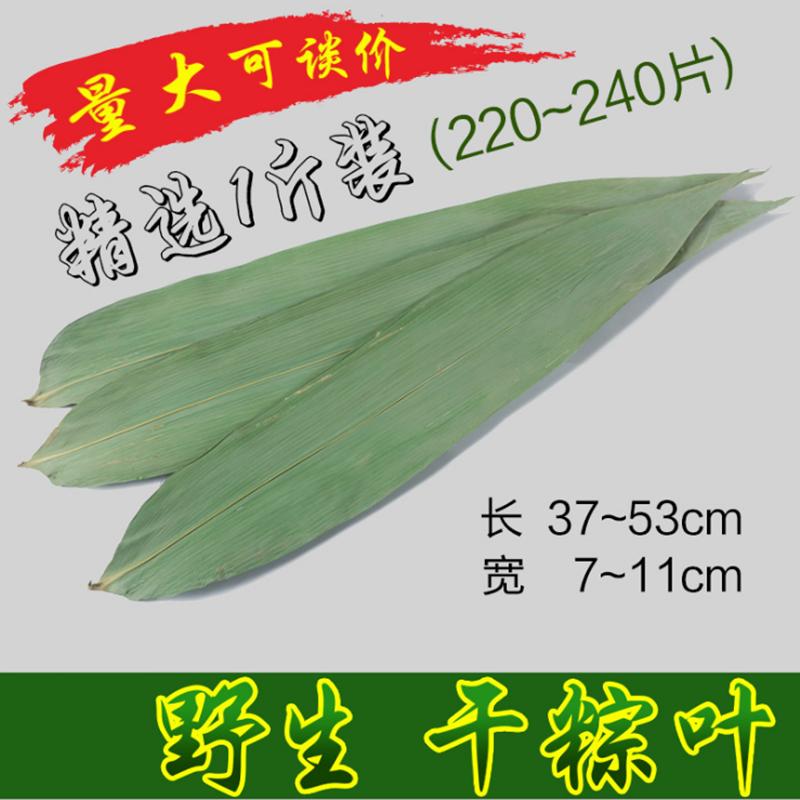 干粽叶包粽子的大粽子叶新鲜纯天然粽叶干粽子叶220张竹棕叶免邮