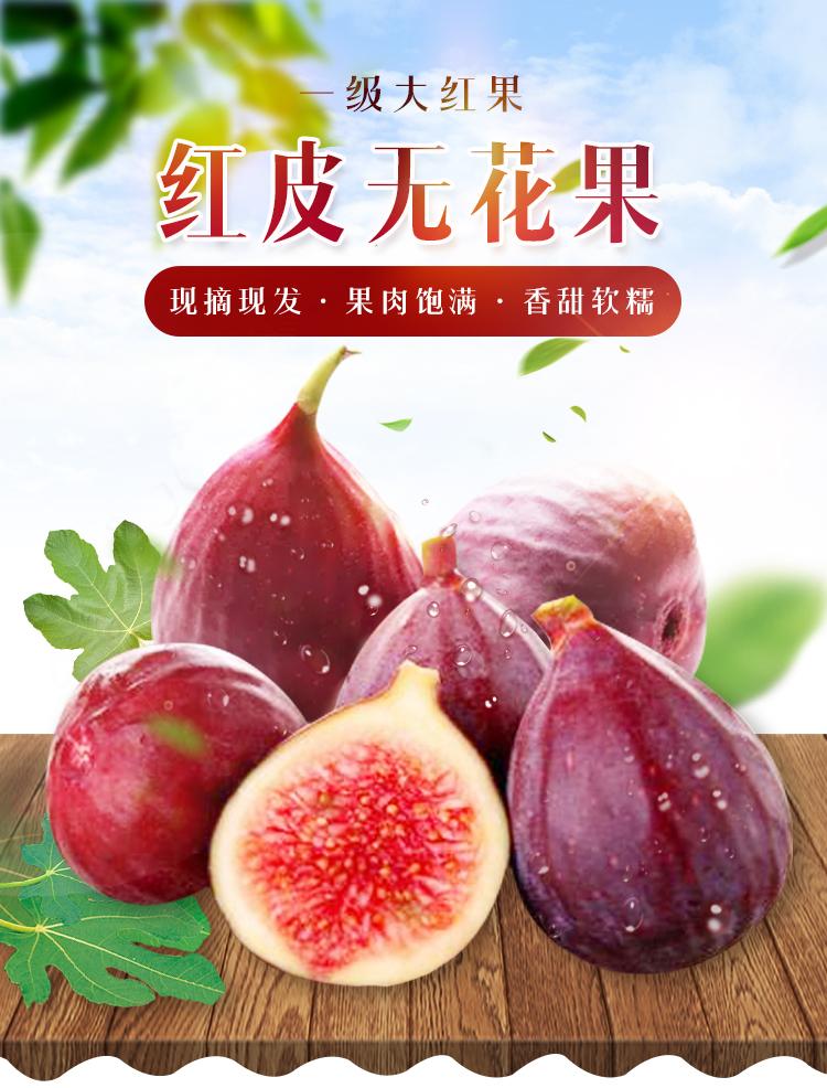 12-02新券果园现摘现发露天波姬红孕妇无花果