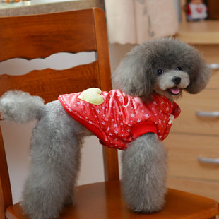 Dog clothes fall and winter jacket vest coat small dog Teddy VIP 2 New Arrivals