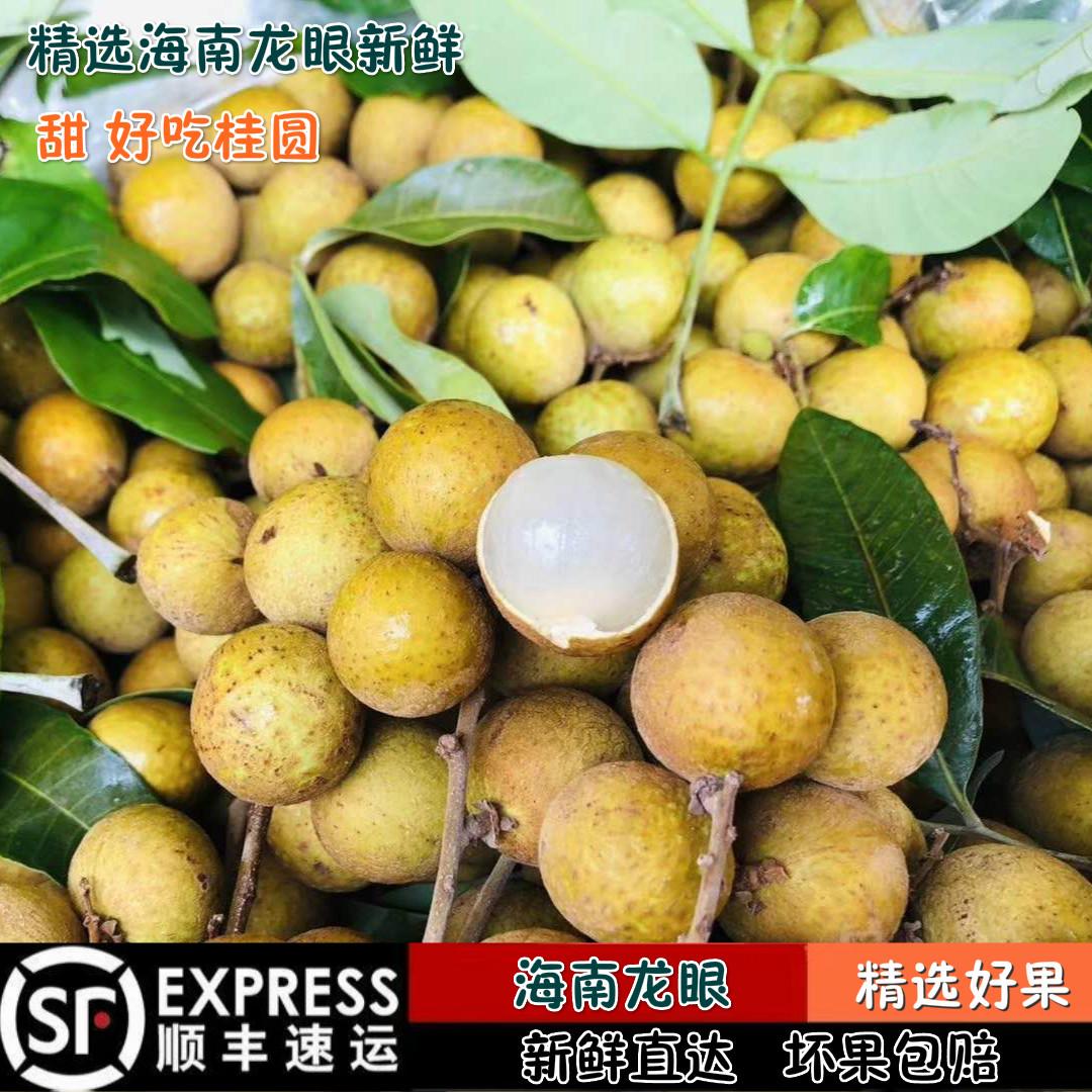 海南龙眼新鲜桂圆现摘现发应季水果热带水果5斤装顺丰深圳发货