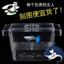 Оборудование для аквариума > Инкубаторы.