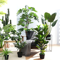 Nordic large green planting indoor simulation plant paradise Bird tortoise leaf Traveler banana tree decorative fake flower potted decoration