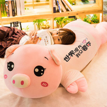 Piggy plush doll, cute bed with you, pillow, doll, girl, boy, piggy, super cute