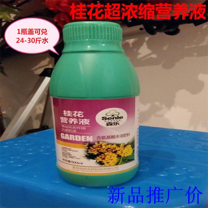 桂花树专用营养液金桂银桂四季桂浓缩液体有机花卉肥料盆栽植物