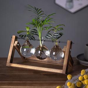 摆件客厅插花卧室水培器皿玻璃花瓶