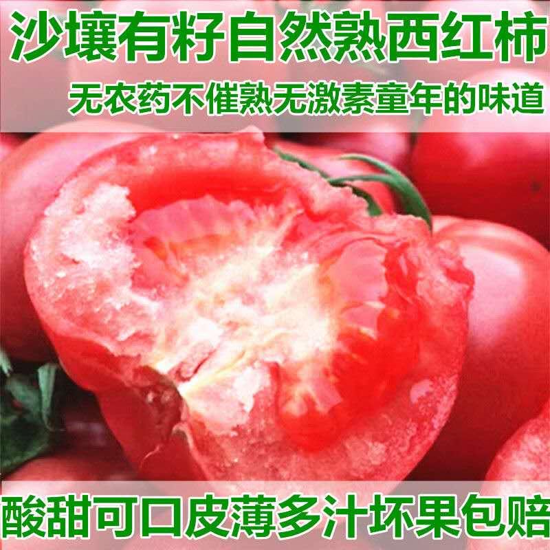 现货新鲜番茄大西红柿,无公害5斤包邮自产自销。现货新鲜蔬菜。