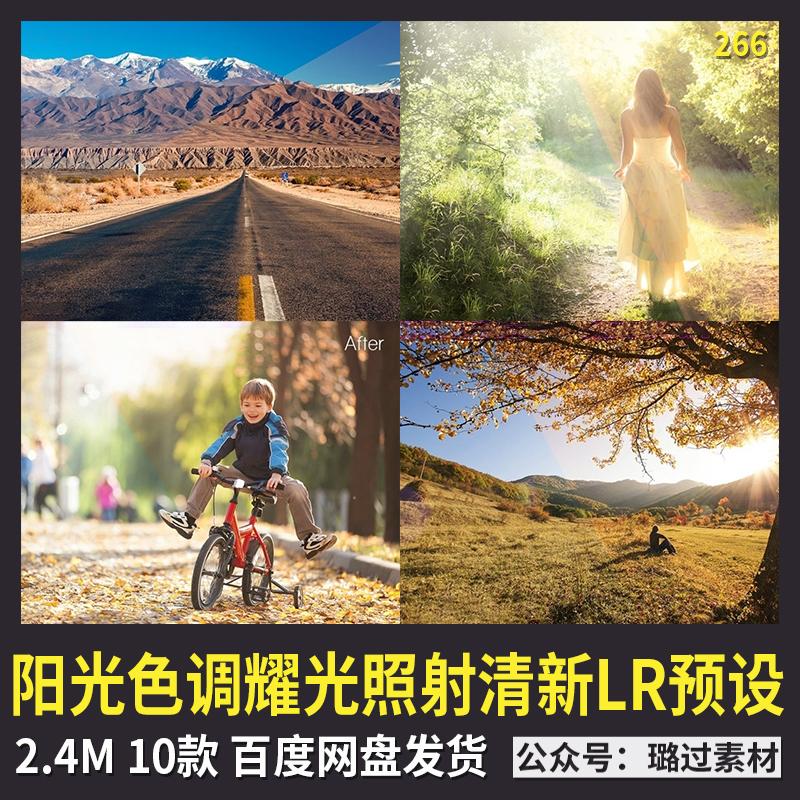 唯美自然写真景色美丽阳光色调耀光照射外景清新Lr预设LR预设素材