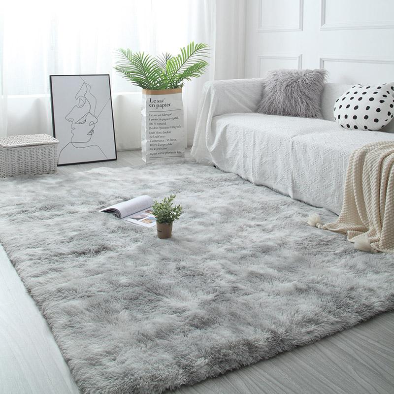 正品保证客厅北欧风拍照免洗卧室满铺大地垫