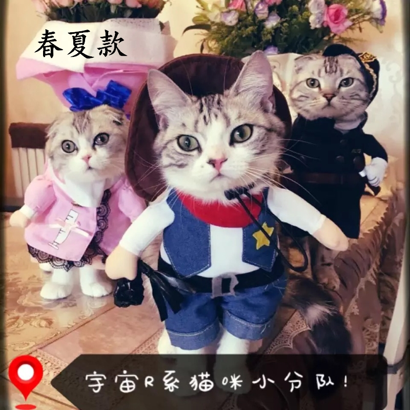 Cat clothes dog clothes pet clothes funny funny funny entertainment change clothes British short Siamese upright spring and summer