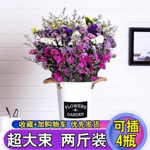 群友到货!【2斤】勿忘我干花花束天然真花