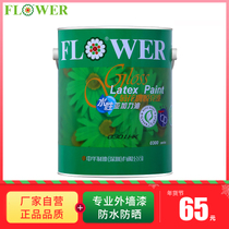 Chrysanthemum brand Yue lacquer outdoor wall paint balcony paint toilet waterproof paint outdoor sunscreen