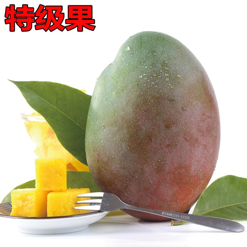攀枝花凯特大芒果大青芒果当季热带新鲜水果整箱10斤包邮批发