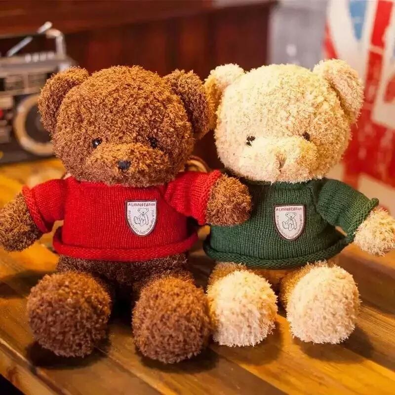 有赠品迪熊小公仔毛绒玩具女生抱抱熊抱枕