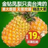 阳哥 台湾进口新鲜水果金钻凤梨1-2个大果菠萝手撕凤梨香甜多汁