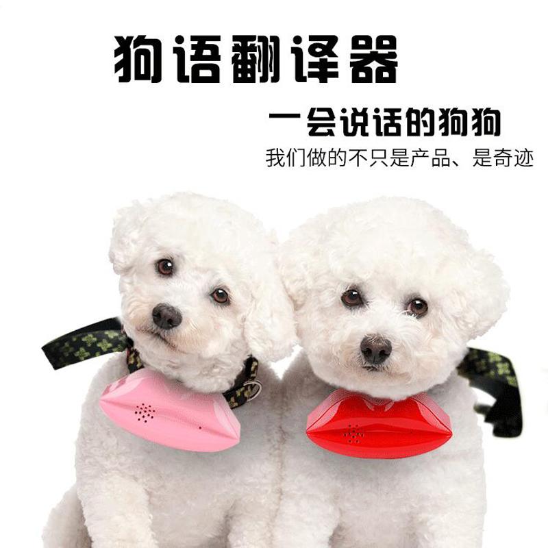 Собака язык речь поворот перевести устройство точный говорить артефакт новый домашнее животное вокализация игрушка общий электронный поворот перевести машинально подлинный