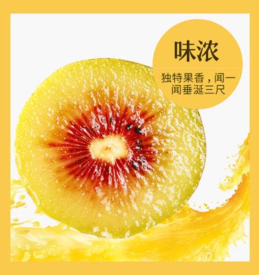 湖南湘西麻阳红心猕猴桃新鲜水果弥猴桃10斤装包邮奇异果5斤泥猴