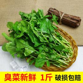 臭菜東北云南包郵 新鮮 500g農家自種新鮮蔬菜臭菜梗東北蘸醬菜圖片