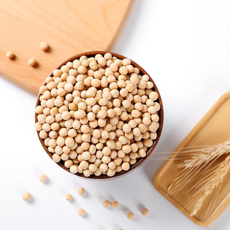 2019年新鲜非转基因新黄豆农家自种山西偏关特产黄豆500g自家种植