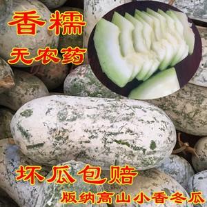 云南版纳高山农家特产高山冬瓜节瓜