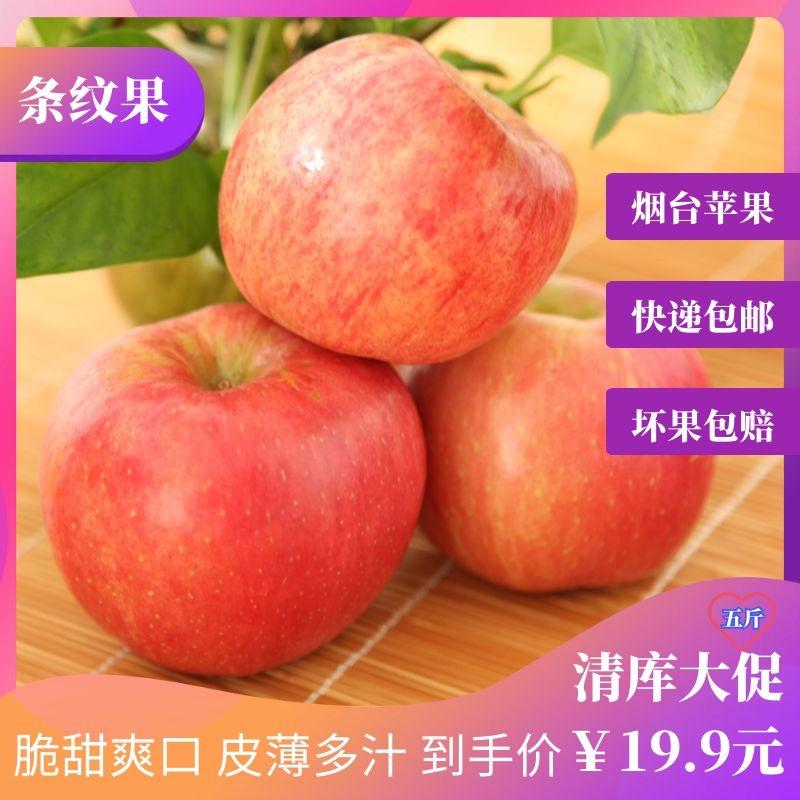 烟台红富士条纹苹果新鲜当季脆甜水果自然生长原产地直销个大皮薄