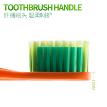 Vegetable Health Radish Toothbrush