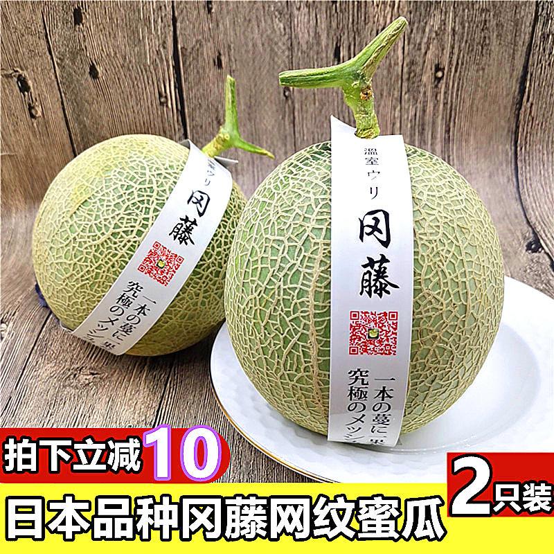 日本品种静冈冈藤蜜瓜网纹蜜瓜海南蜜瓜2个装哈密瓜新鲜水果甜瓜