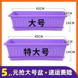 阳台种菜盆蔬菜种植箱种菜神器家庭家用长方形花槽塑料花盆长条型