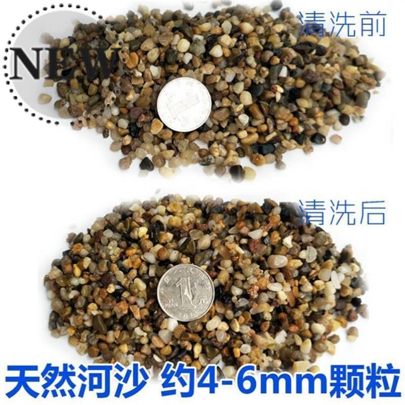 乌龟鱼缸造景河沙石头石天然大号地f沙圆石美丽打底品种好看水族