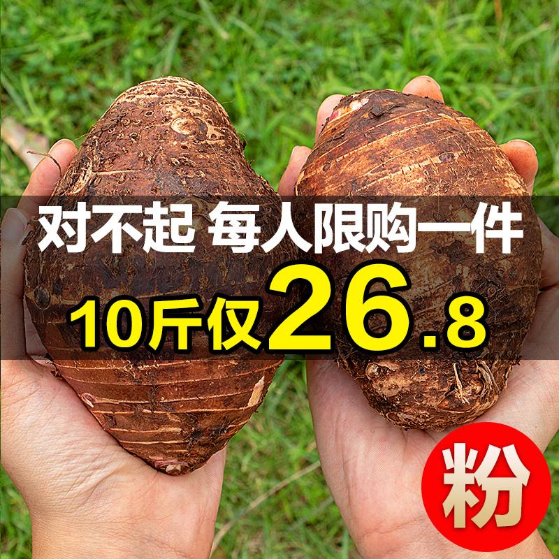 广西荔浦芋头10斤装新鲜包免邮当季大香芋农产品荔甫芋艿农家自种
