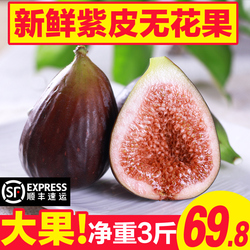 【顺丰包邮】云南红皮无花果新鲜水果3斤现摘现发孕妇时令鲜果