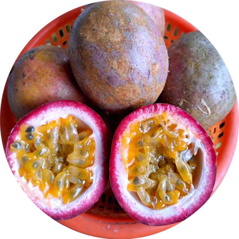 广西高山老树花皮百香果热带水果新鲜西番莲鸡蛋果现摘5斤装大果