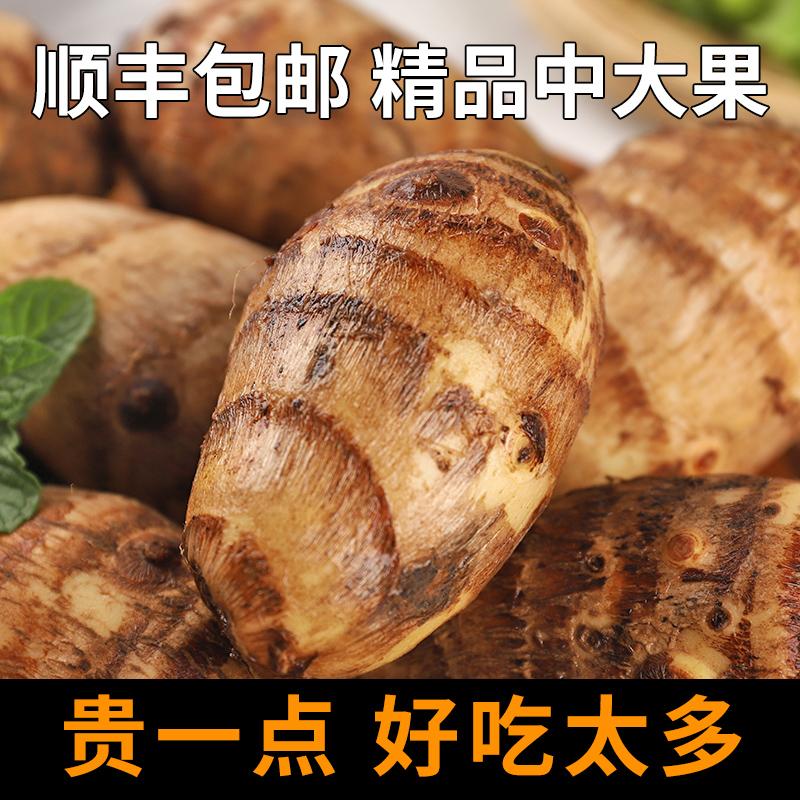 芋头新鲜小芋头农家毛芋头小香芋芋艿非广西荔浦芋头5斤顺丰包邮