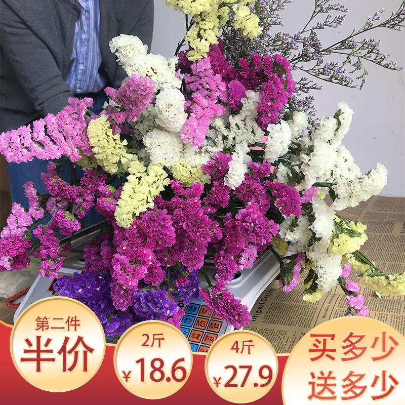 【买一斤送一斤】勿忘我鲜花天然干花花束满天星称斤花束礼品插花