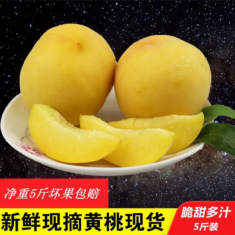 新鲜现摘黄桃包邮桃子净重5斤毛桃券后35.40元