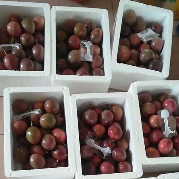 鲜颖 百香果带箱3斤包邮广西现摘特级红果新鲜白香果鸡蛋香西番莲54.05元包邮