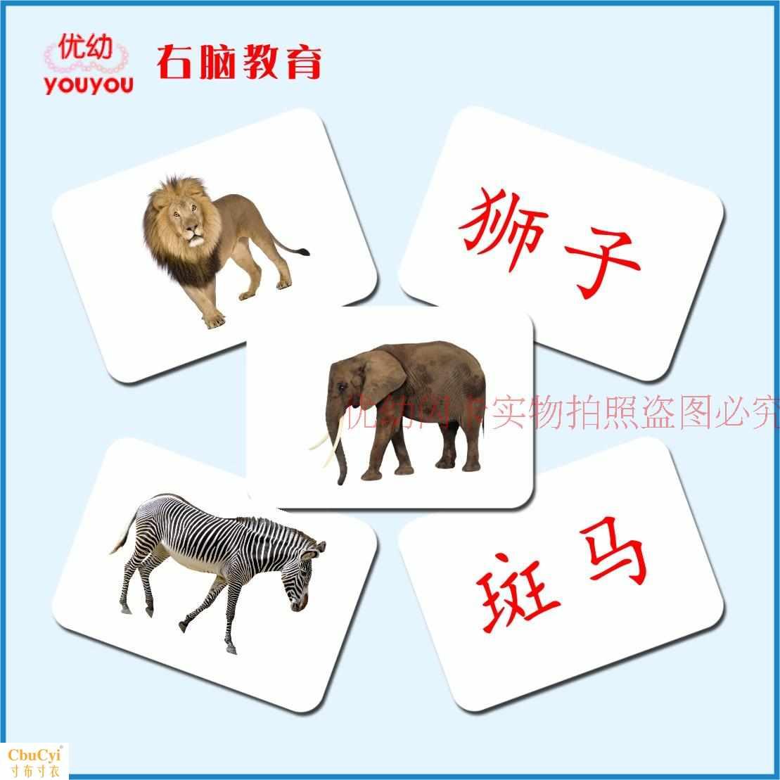 Карточки для раннего обучения Артикул 596517753147