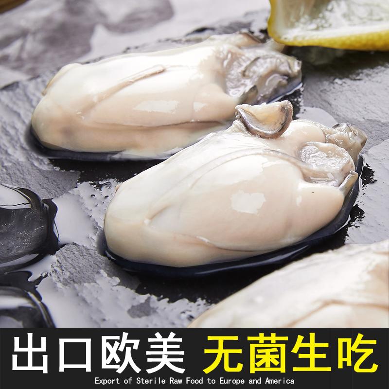 143.00元包邮生吃海鲜即食生蚝12只XXL级 生蚝牡蛎肉水产料理食材生蚝刺身级