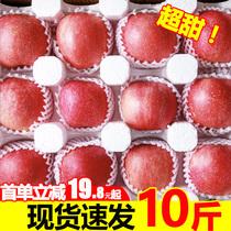 烟台红富士苹果水果新鲜十栖霞整箱斤包邮带箱10当季助农山东平果