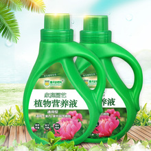 Dvordo Plant Nutrition Solution Home Horticulture Concentrated Liquid Fertilizer General Fertilizer for Soilless Culture of Flowers and Plants