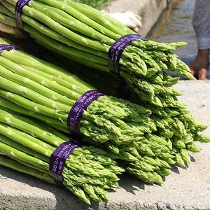 包邮 切除白根2斤装新鲜芦笋黄山绿芦笋自种新鲜蔬菜龙须菜宣