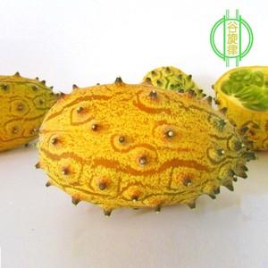 新鲜火参果刺当季孕妇水果带箱角瓜