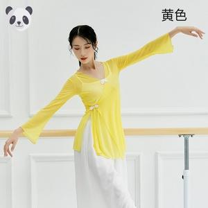 古典舞身韵纱衣艺考中国风练功服