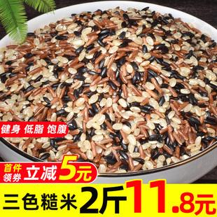 三色糙米新米红米黑米饭健身脂减胚芽米五谷杂粮组合粗粮500g*2袋