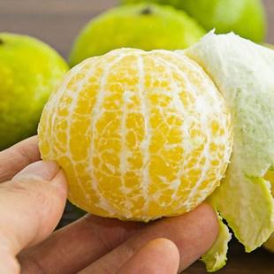 广西皇帝柑应季新鲜水果蜜桔橘子黄帝贡甘薄皮沃柑青皮整箱包邮5