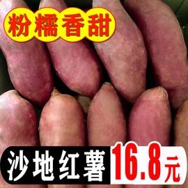 红薯新鲜10板栗红薯蜜薯糖心农家自种9斤沙地黄心地瓜番薯5斤包邮图片