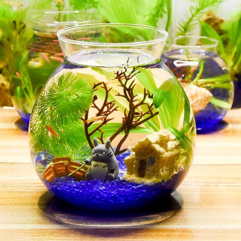 创意造景鱼缸观赏生态瓶鱼微景观免换水免打理diy水族办公桌面,可领取1元天猫优惠券